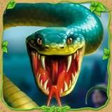 蛇蛇大乱斗OL1.0.2