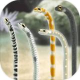 养育花园鳗的治愈游戏