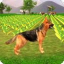 牧羊犬模拟2020