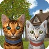 猫咪生存模拟1.0.0