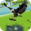 金鹰生存模拟器1.2