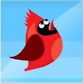 红鸟跳上天空2.64
