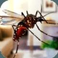 超级蚊子大乱斗1.0.0
