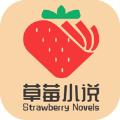 草莓小说 v1.0